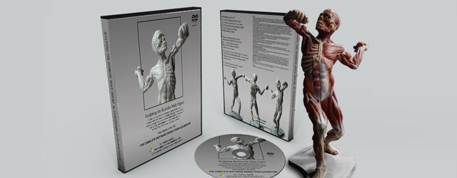 Limited Set DVD Ecorche Male Model