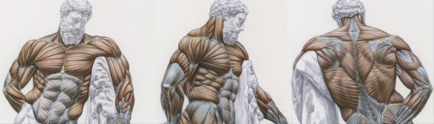 Video Tutorial 5 : Process Documentary, Sculpting Hercules           ITEMS  AVAILABLE FOR PURCHASE Mastering The Human Anatomy Sculpting DVD […]