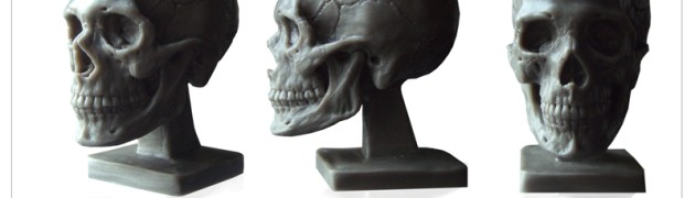 $39.97 - Great for anatomy study ,reference for drawing , sculpting, 3D modeling and concept art work.