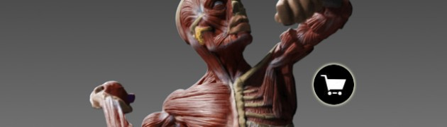 $0.00 - Great for anatomy study ,reference for drawing , sculpting, 3D modeling and concept art work.